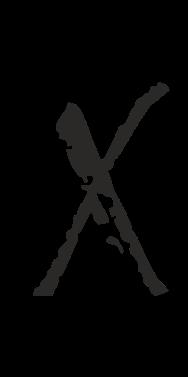 Logo X | Carola X Matthes